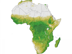 Photosynthetically active areas of Africa.