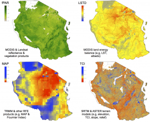 Example remote sensing covariates from Tanzania.